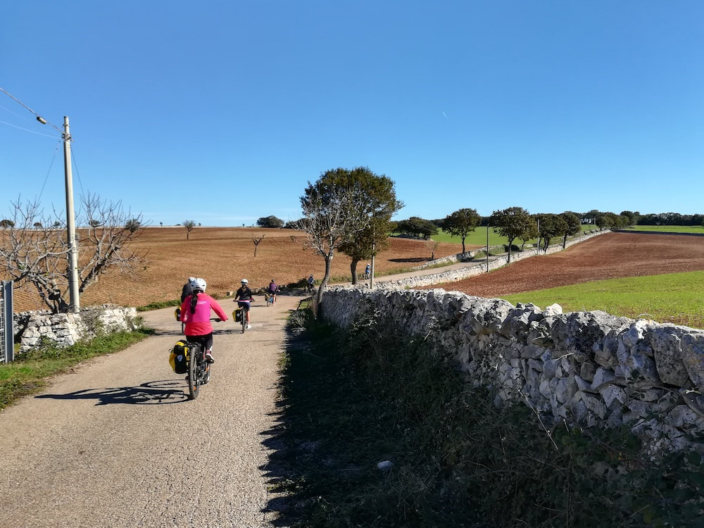 Cycling in Apulia - Apulian countryside